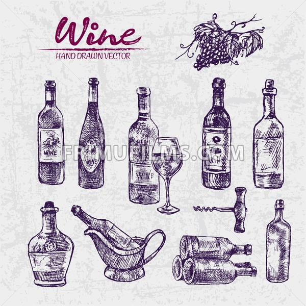 600x600 Digital Color Vector Detailed Line Art Different Shapes Of Wine