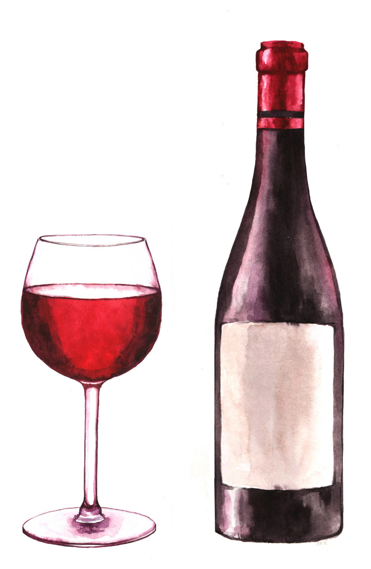 736x1128 Hand Drawn Watercolor Illustration Of The Wine Bottle And One
