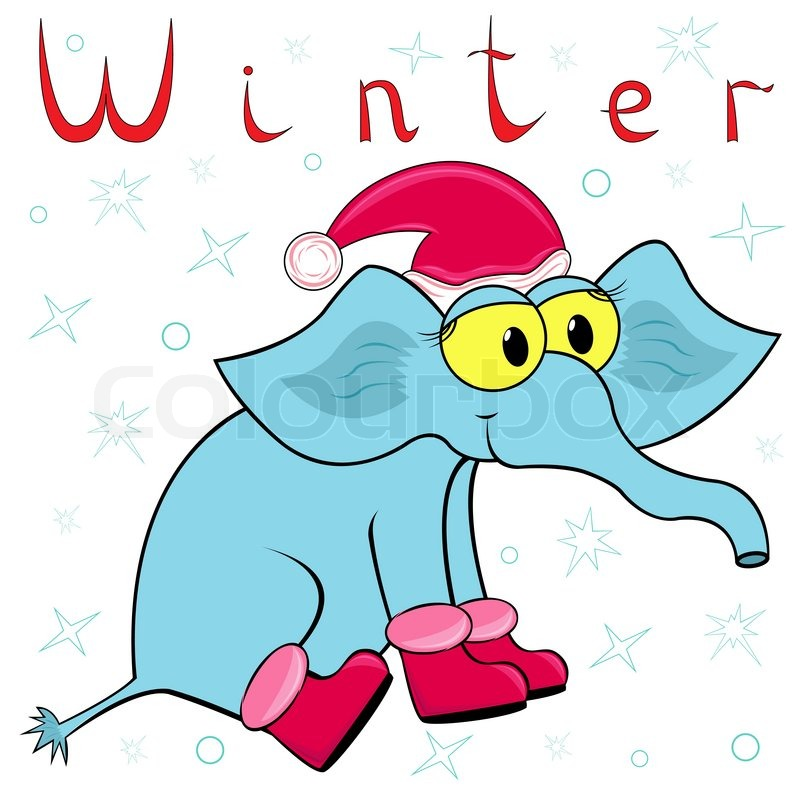 800x800 Why Elephant Is So Cold In Winter Cheerful Elephant In The Cap