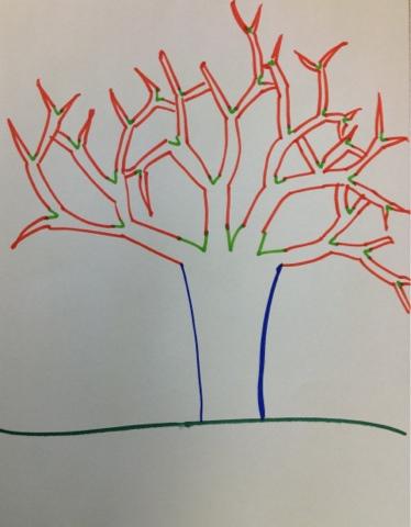 374x480 Organized Chaos Winter Trees