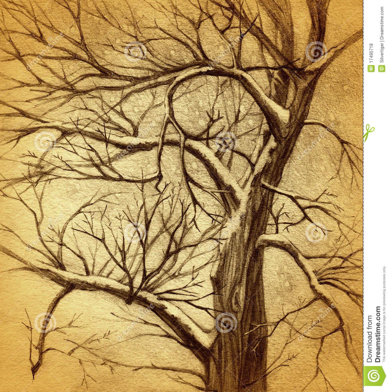 1293x1300 Arthur Rackham Tree Branches
