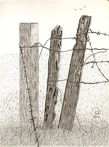223x300 Barb Wire Fence Drawings Fine Art America