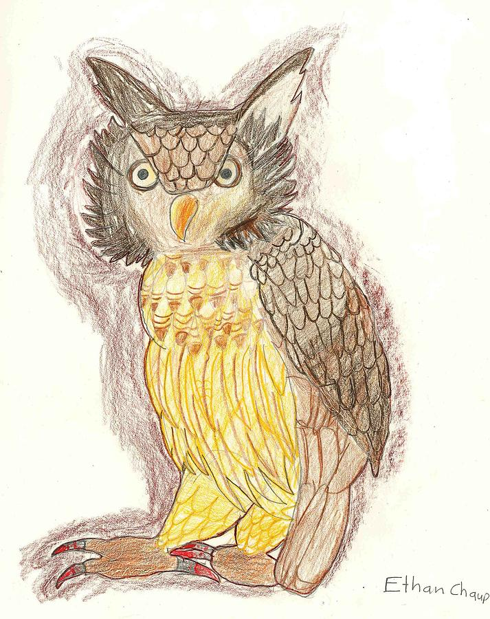 713x900 Wise Owl Drawing By Ethan Chaupiz