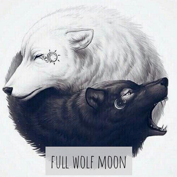 Wolf And Moon Drawing at GetDrawings