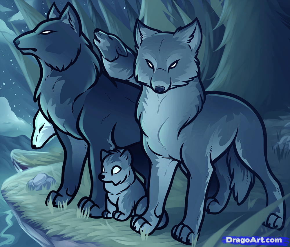 1000x851 How To Draw A Wolf Pack, Pack Of Wolves, Step By Step, Forest