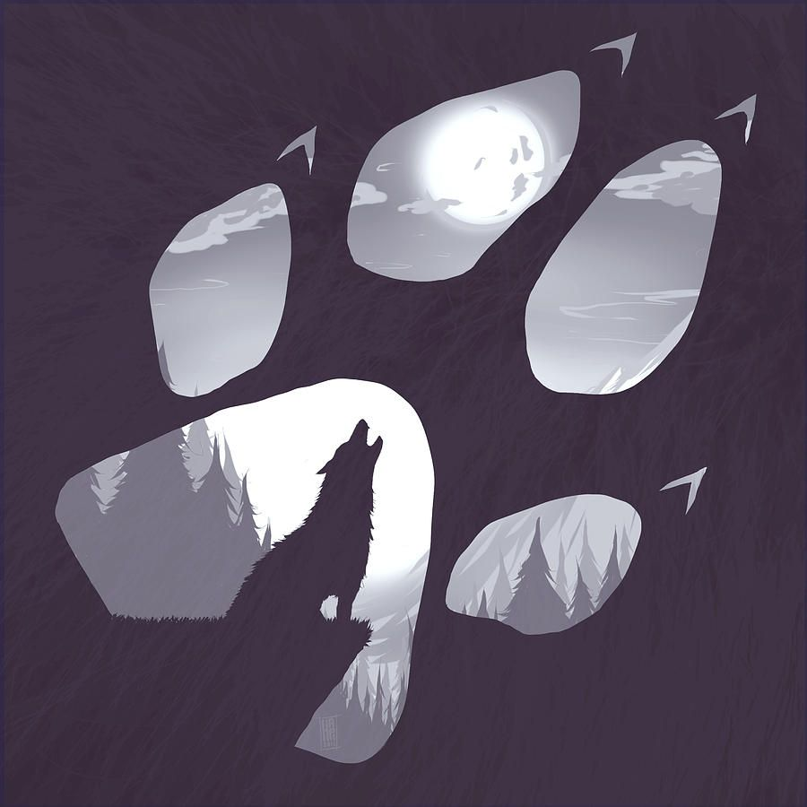 900x900 Wolf Paw Drawing