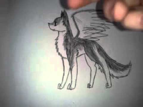 480x360 How To Draw Wings For Your Wolf