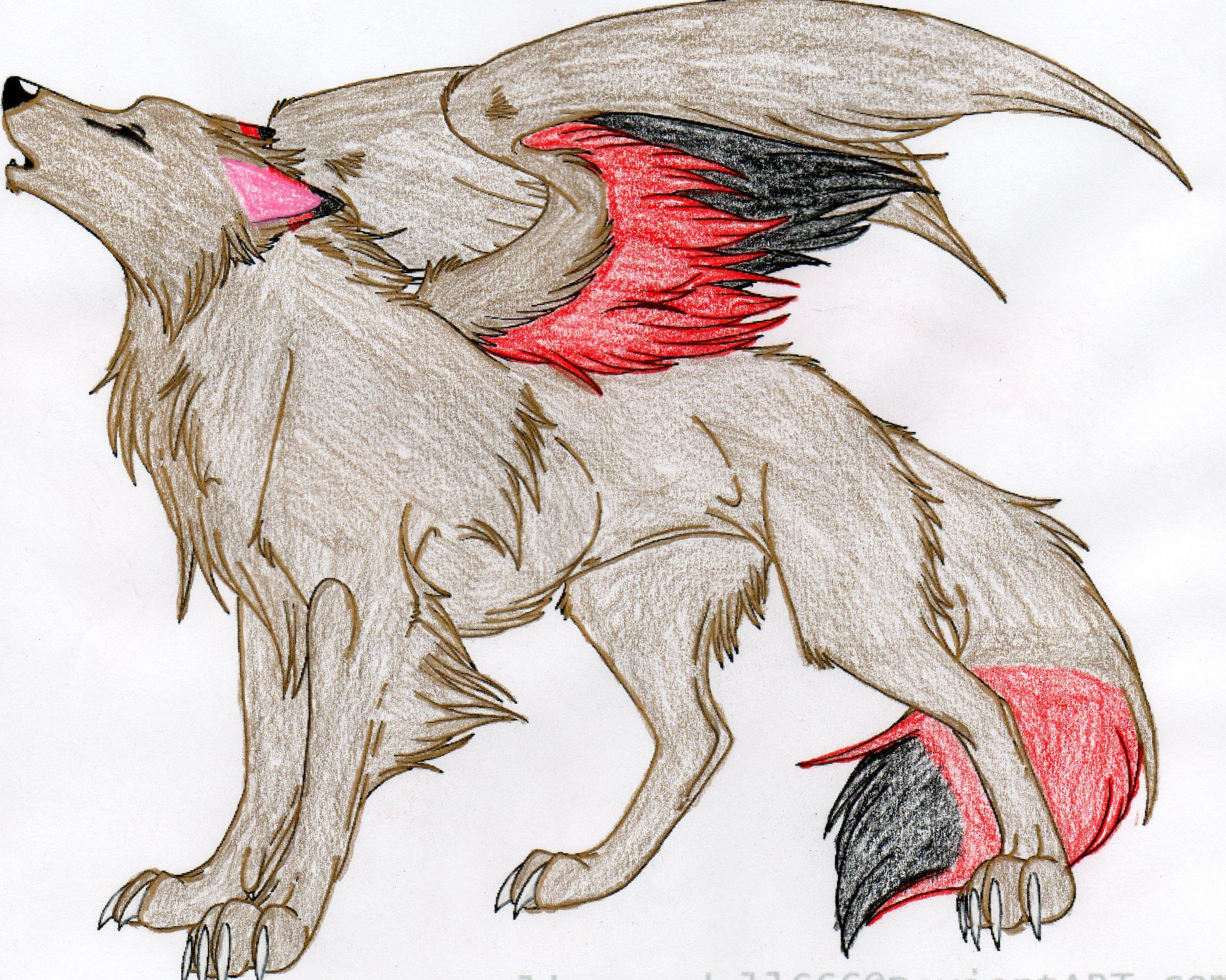 2364x1890 Winged Wolf Colored By Duetmaxwell On Dragons