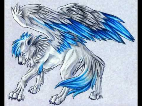 480x360 Wolves With Wings!!!!!