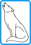 135x192 How To Draw A White Wolf Step 13 How To Draw Wolf