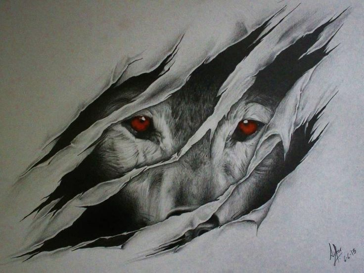 wolf eye drawing at getdrawings com free for personal use wolf eye