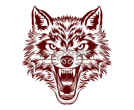 450x369 Fierce Wolf Face. Digital Drawing.vector Illustration Art Royalty
