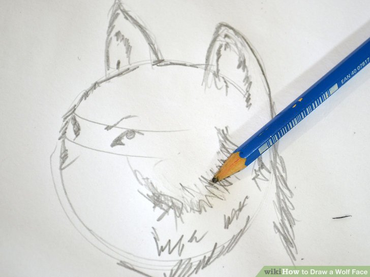 728x546 How To Draw A Wolf Face 8 Steps (With Pictures)