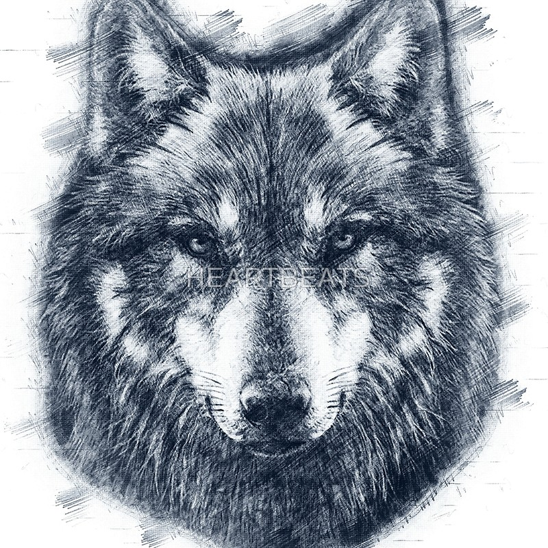 800x800 Wolf Face Drawing Throw Pillows By Heartbeats Redbubble