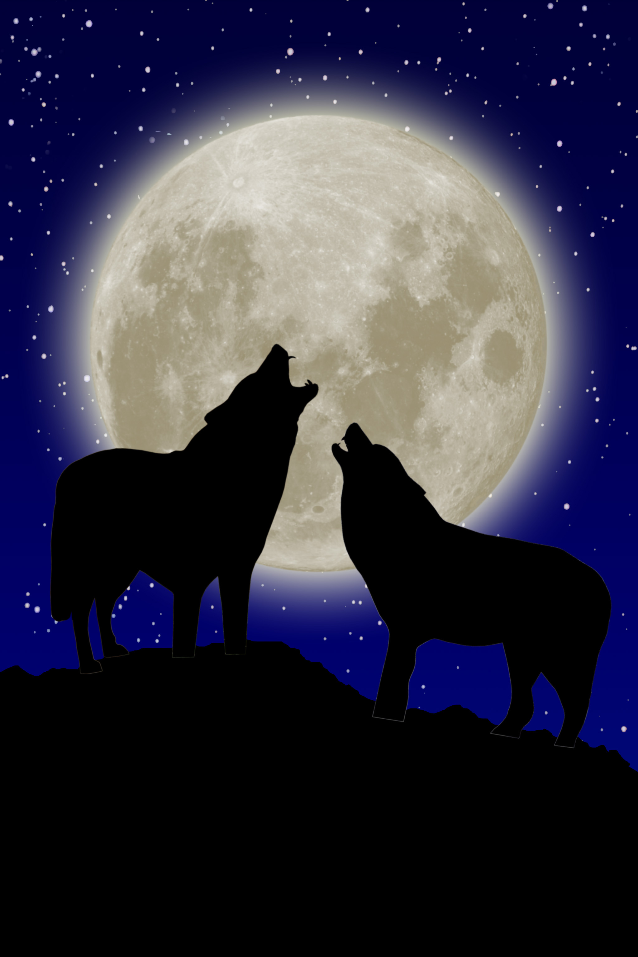 2048x3072 2 Wolves Howling