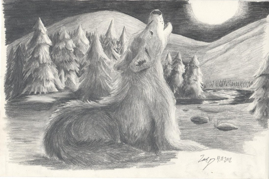 1096x728 Drawing Of A Wolf Howling At The Moon Pencil Sketches Of Wolves