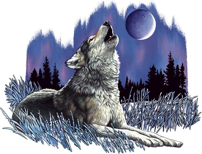 Wolves Howling At The Moon Wallpaper