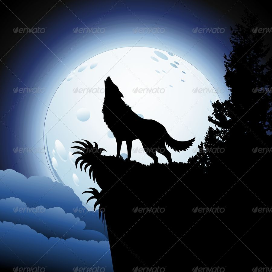 Wolf Howling At Moon Drawing At Getdrawings