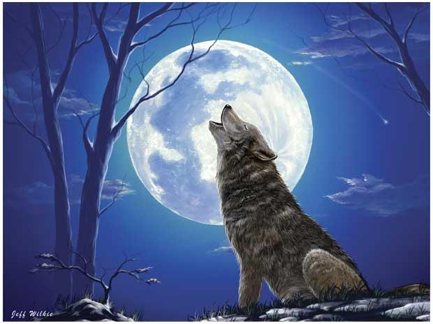 Wolf Howling At The Moon Drawing At Getdrawings