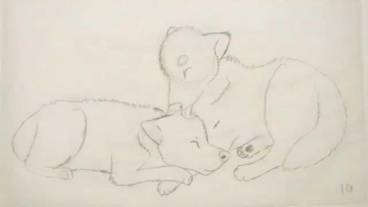 1280x720 Hand Drawn Wolf Animation