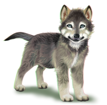 416x407 Wolf Pup Png Transparent Wolf Pup.png Images. Pluspng