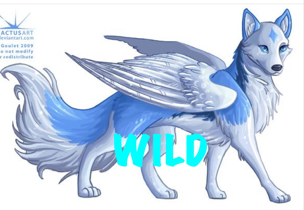 It is a picture of Epic Dog With Wings Drawing