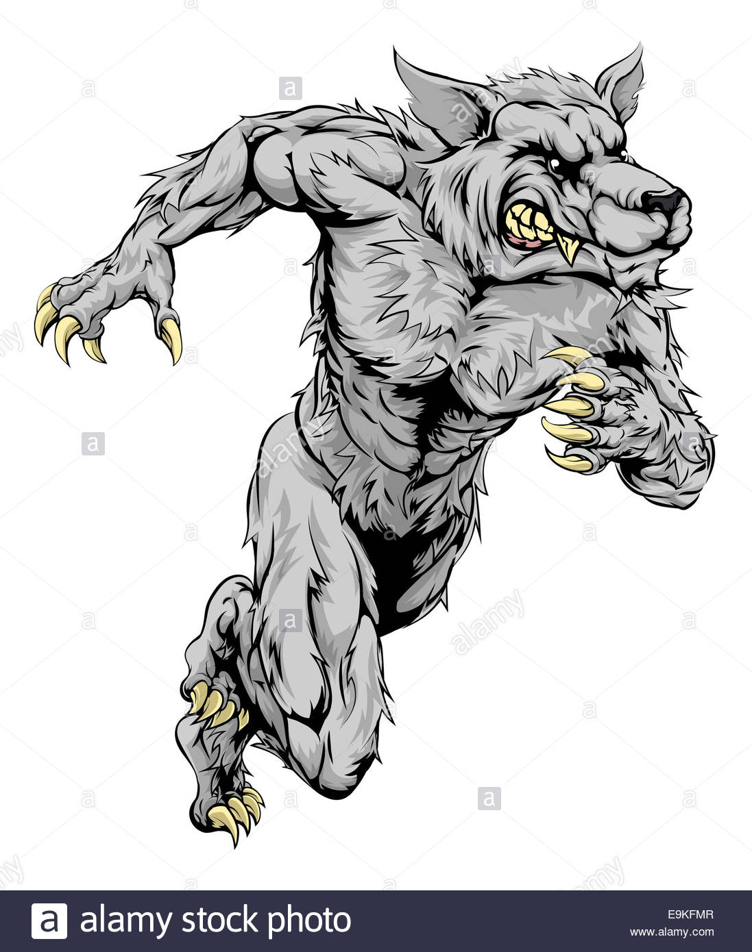 1097x1390 A Werewolf Wolf Man Character Or Sports Mascot Charging, Sprinting