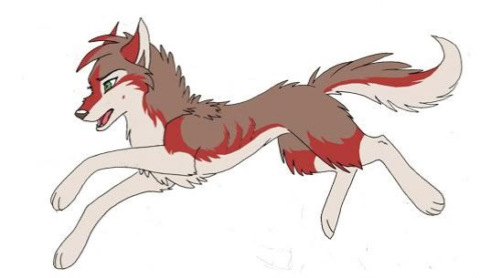 525x305 Its a younger Ara!! Running to see Ember Running after her father