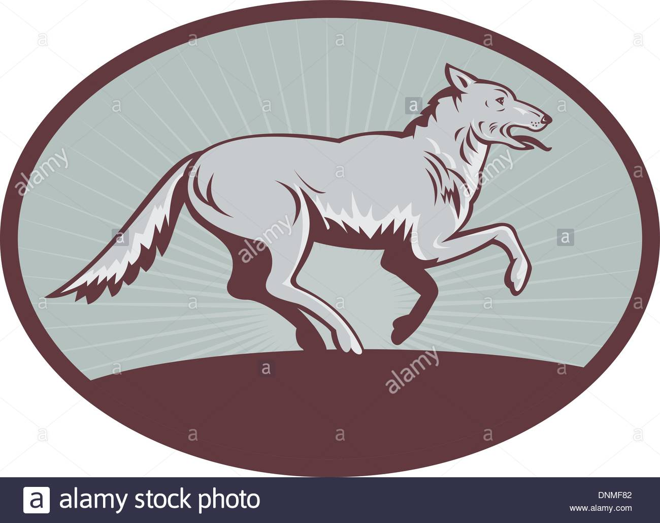 1300x1029 Illustration Of A Gray Wolf Running Side View Stock Vector Art
