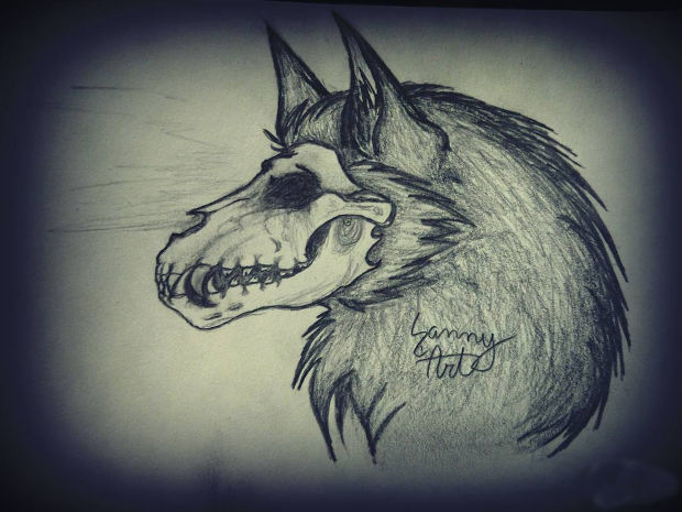 620x465 25+ Skull Drawings, Art Ideas Design Trends