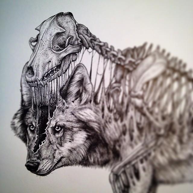 640x640 Exploding Skeleton amp Skull Illustrations by Paul Jackson Art