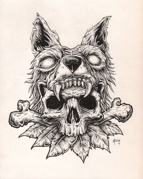 500x625 Wolf Skull Illustration