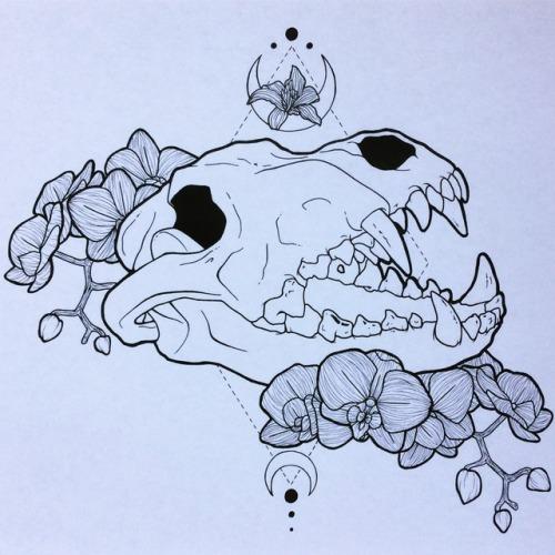 500x500 Wolf Skull Sketch Tumblr