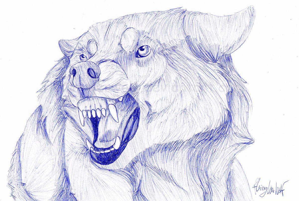 1202x809 Snarling Wolf Drawing Wolf Snarl Ballpennathalienova On Deviantart