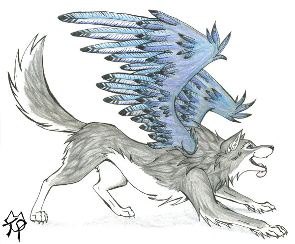 600x495 Wolves With Wings Blue Wolf With Wings Jenn Of Blue Wings By