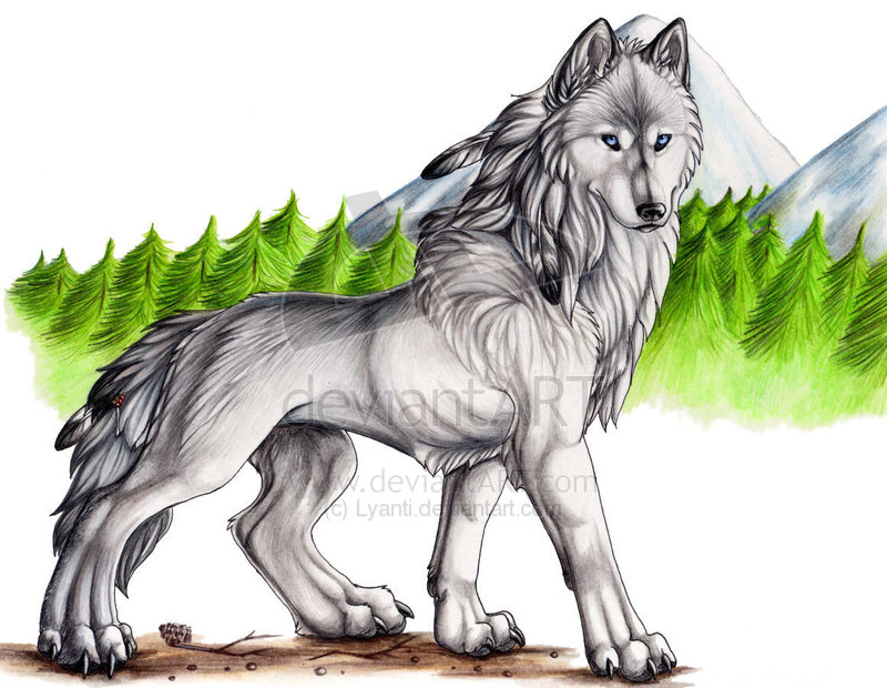 800x620 Drawing From Drawing Wolf Portrait Artificial Intelligence