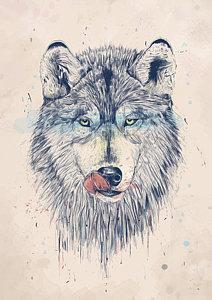 212x300 Wolf Drawings Fine Art America