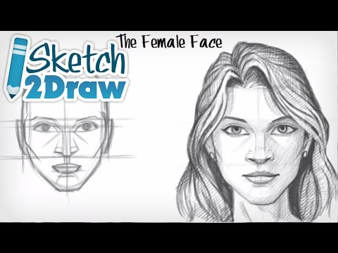 480x360 How To Draw The Female Face