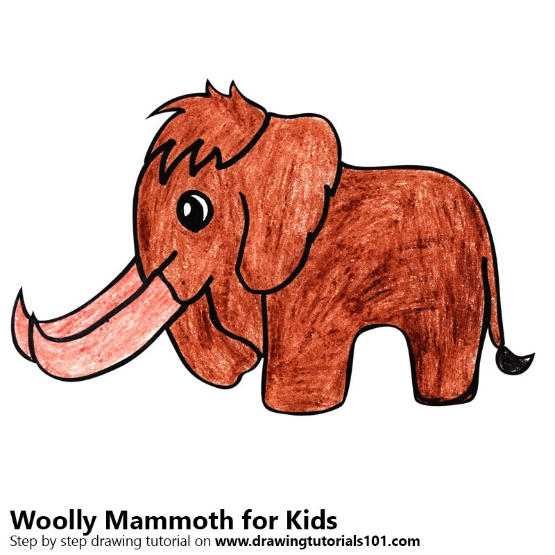 800x800 Learn How To Draw A Woolly Mammoth For Kids (Animals For Kids