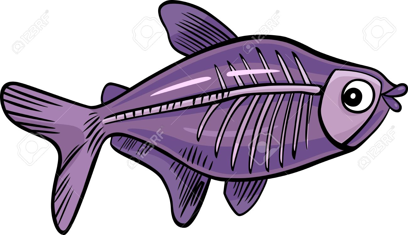 1300x748 Cartoon Illustration Of X Ray Fish Royalty Free Cliparts, Vectors
