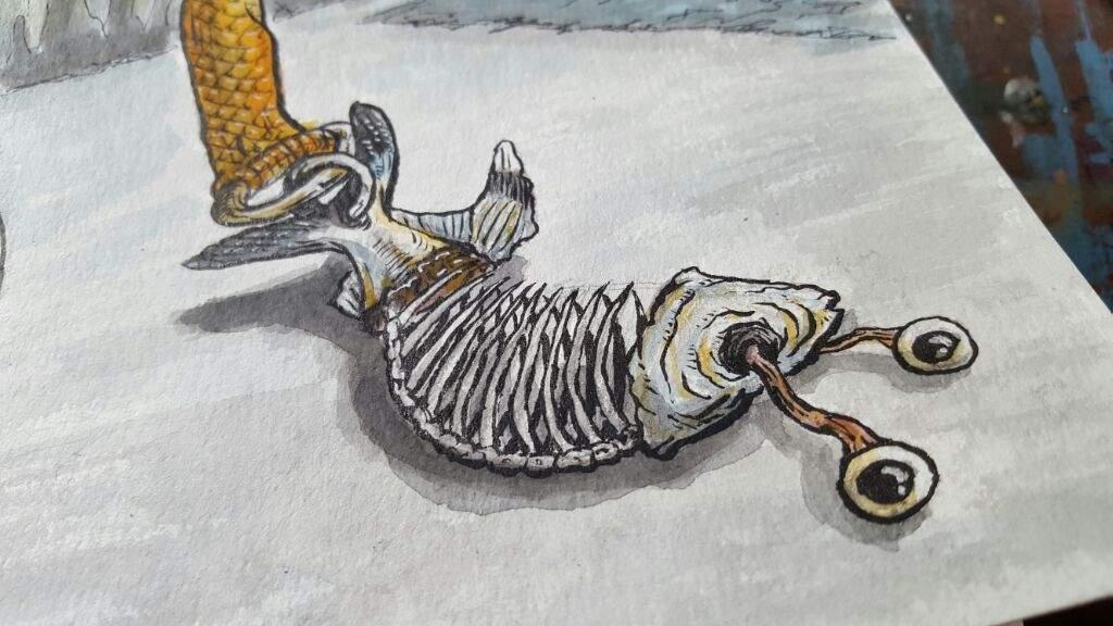1024x576 Draw A Xeric X Ray Tetra Fish Art Amino