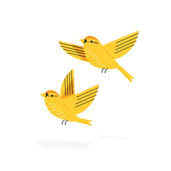 650x650 Yellow Birds Illustrated By Sarah Abbott I