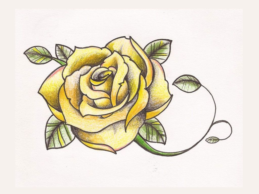 Yellow Rose Drawing at GetDrawings.com | Free for personal use ...