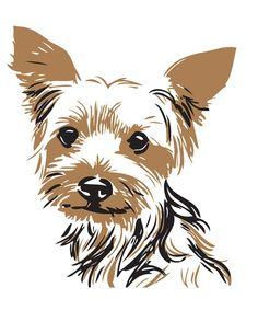 236x294 021302 Yorkshire Terrier I Canvas Art Print Yorkshire Terrier