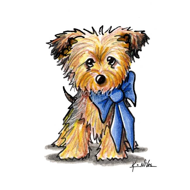 650x650 Stunning Yorkie Colored Pencil Drawings And Illustrations