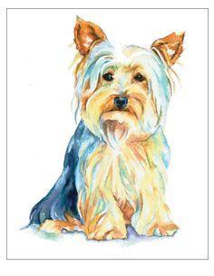 236x305 Yorkshire Terrier Puppy Yorkie Silky Silkie