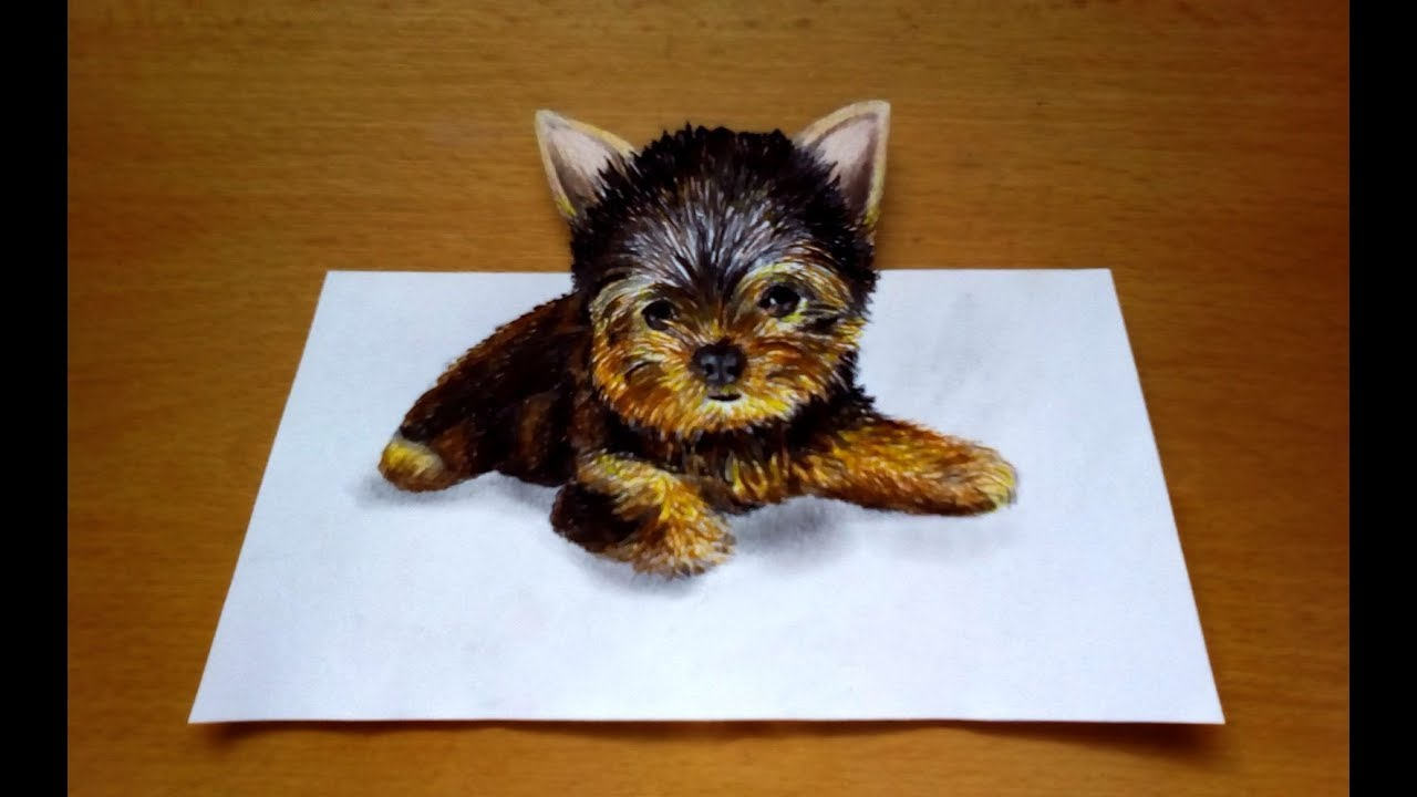 1280x720 3d Drawing Yorkshire Terrier