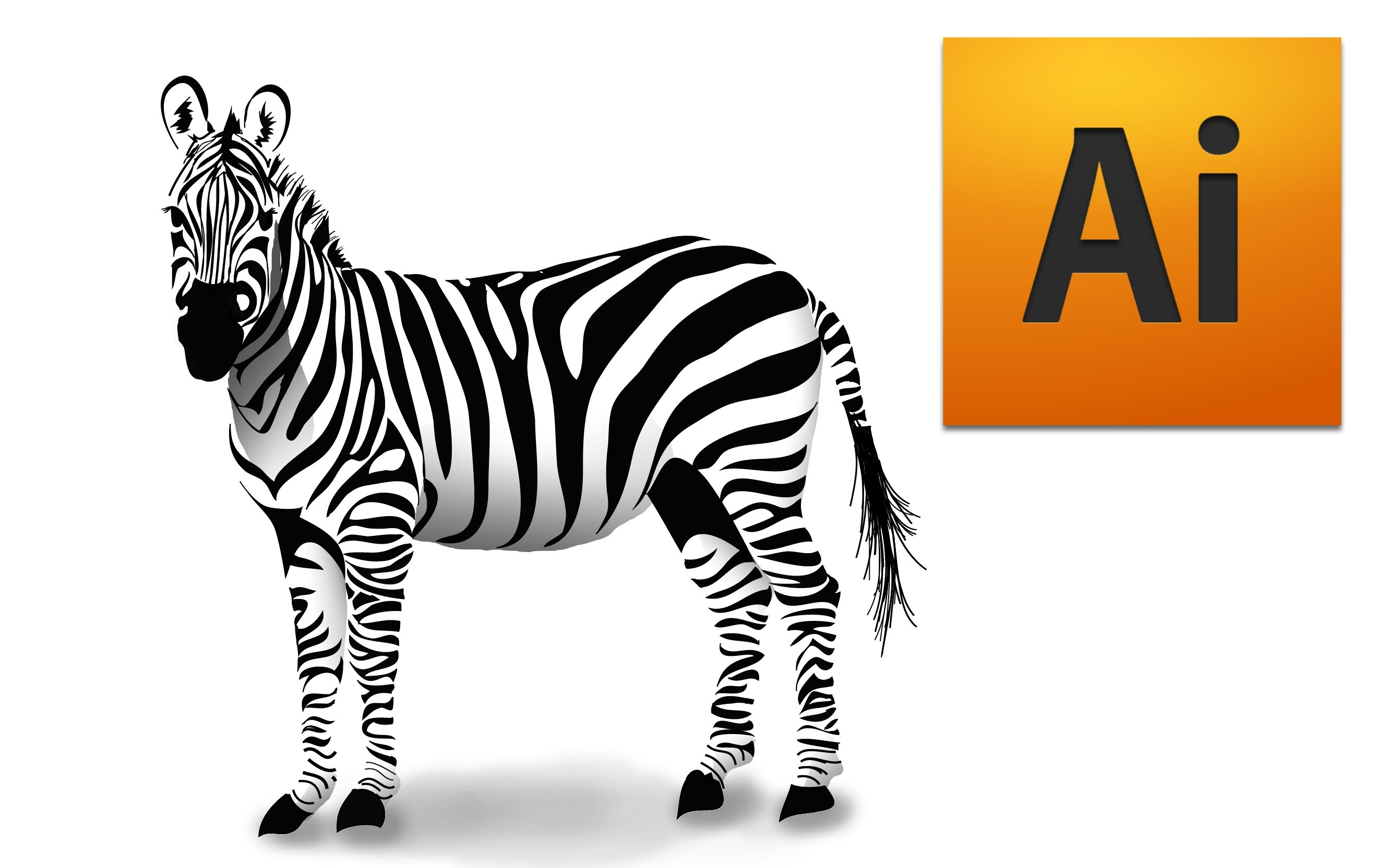 2637x1665 How to draw a zebra in Adobe Illustrator Digital vector drawing