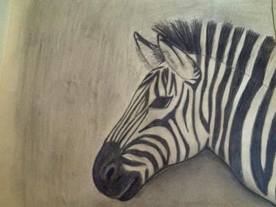 400x300 My zebra