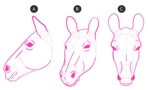 600x368 How To Draw Animals Zebras And Giraffes